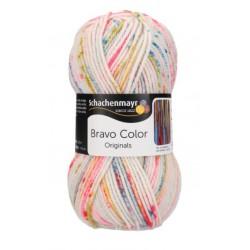 Włóczka Bravo Color 02136